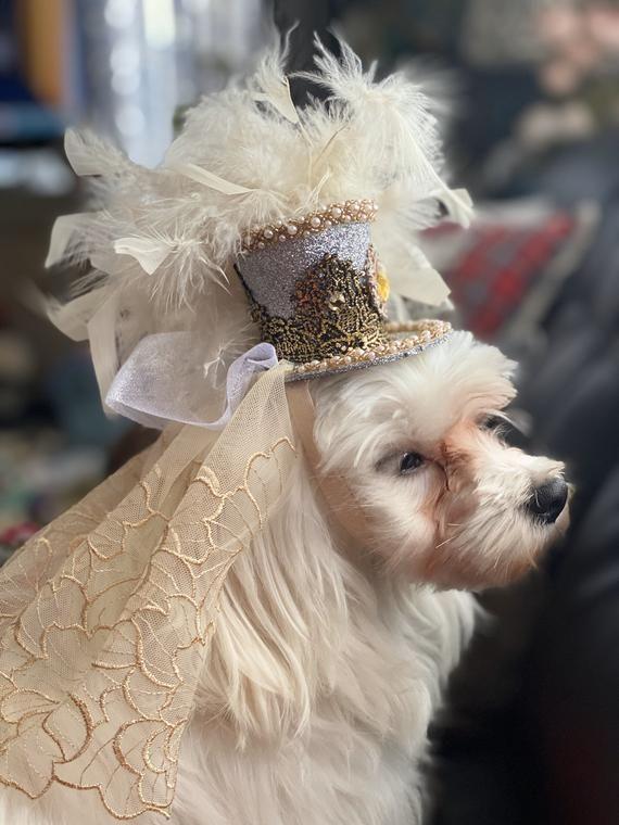 Deluxe Dog Hat Dog Wedding Accessories Dog Cat Hat Fancy Dog Hat Dog Hat With Elastic Band Luxury Dog Hats A Dog Wedding Accessories Dog Hat Dog Wedding