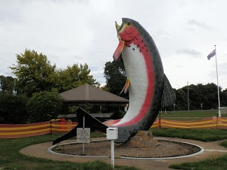The BIG Trout! Adaminaby, #NewSouthWales, #Australia