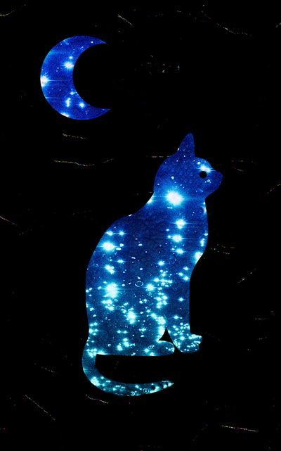 25+ best ideas about Galaxy cat on Pinterest | Cat ...