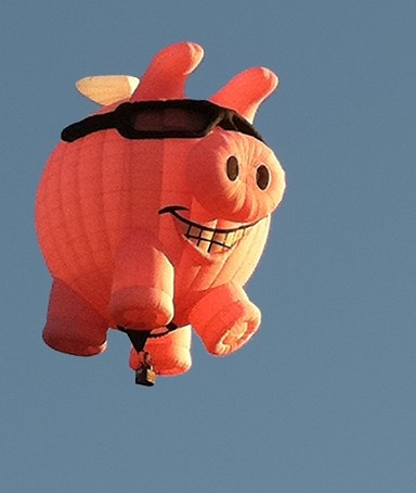 87 best When Pigs Fly images on Pinterest