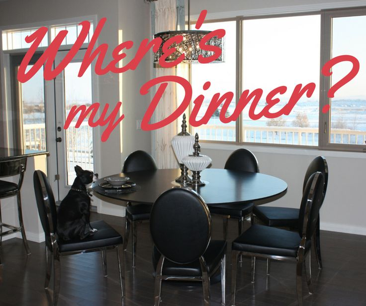 What does a dog have to do to get dinner around here? The kitchens here in Ranchers' Rise aren't just beautiful, they're family (and dog) friendly ~ Love, Mickey  http://www.okotoksranchersrise.com/new-home-awaits-ranchers-rise