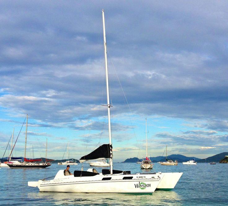 Catamaran Virgin Islands Vacation: 116 Best Caribbean Sailing/Yacht Charters Images On