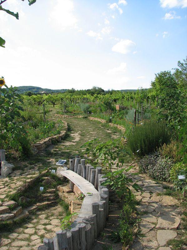 Gyógynövény-völgy Ökoturisztikai központ (Zánka) http://www.turabazis.hu/latnivalok_ismerteto_4280 #latnivalo #zanka #turabazis #hungary #magyarorszag #travel #tura #turista #kirandulas