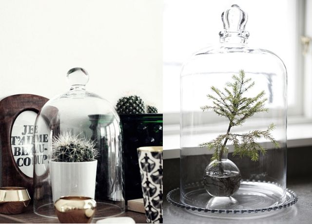 17 best images about vitrines globes cloches on for Cloche verre decorative
