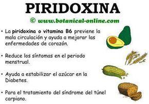 Piridoxina vitamina b6 alimentos propiedades beneficios