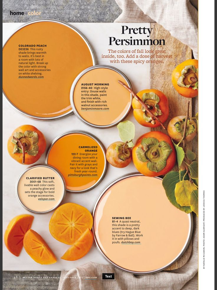 Better Homes And Gardens Pretty Persimmon Paint PalletsColor PalletsDining