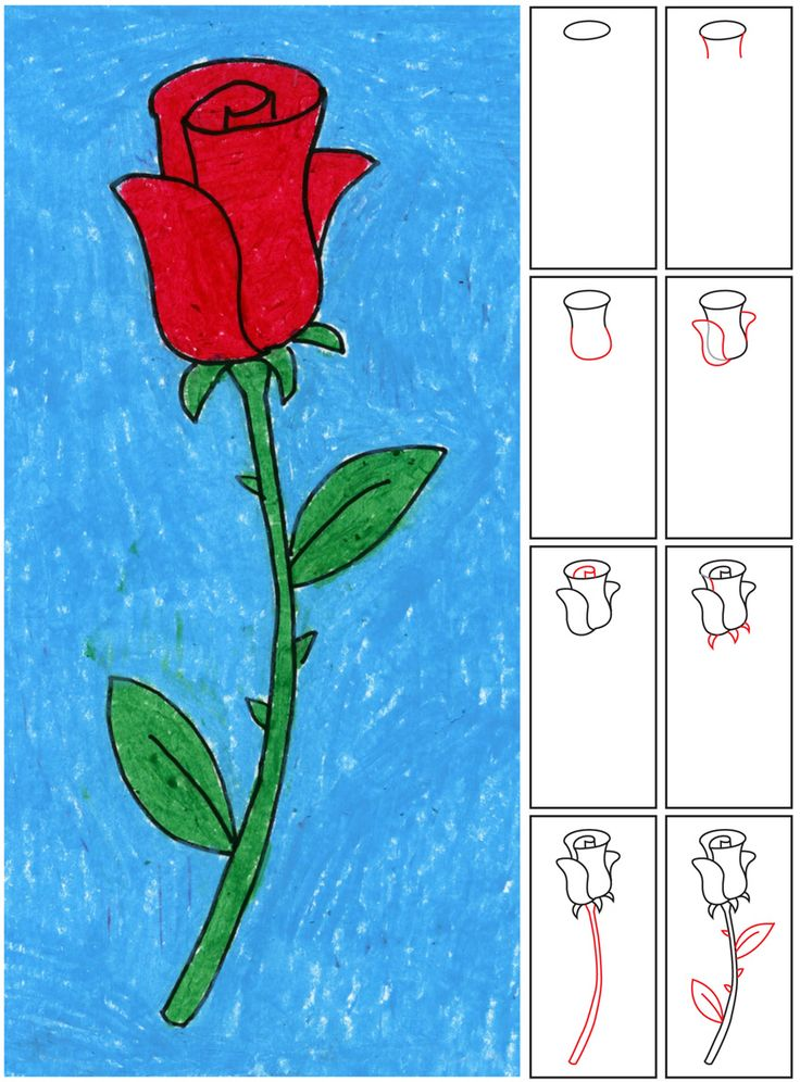 25 best ideas about easy rose drawing on pinterest how for Websites you can draw on