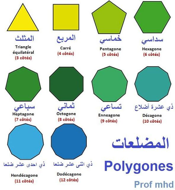 School Algeria المضلعات Polygones Pie Chart Chart Map