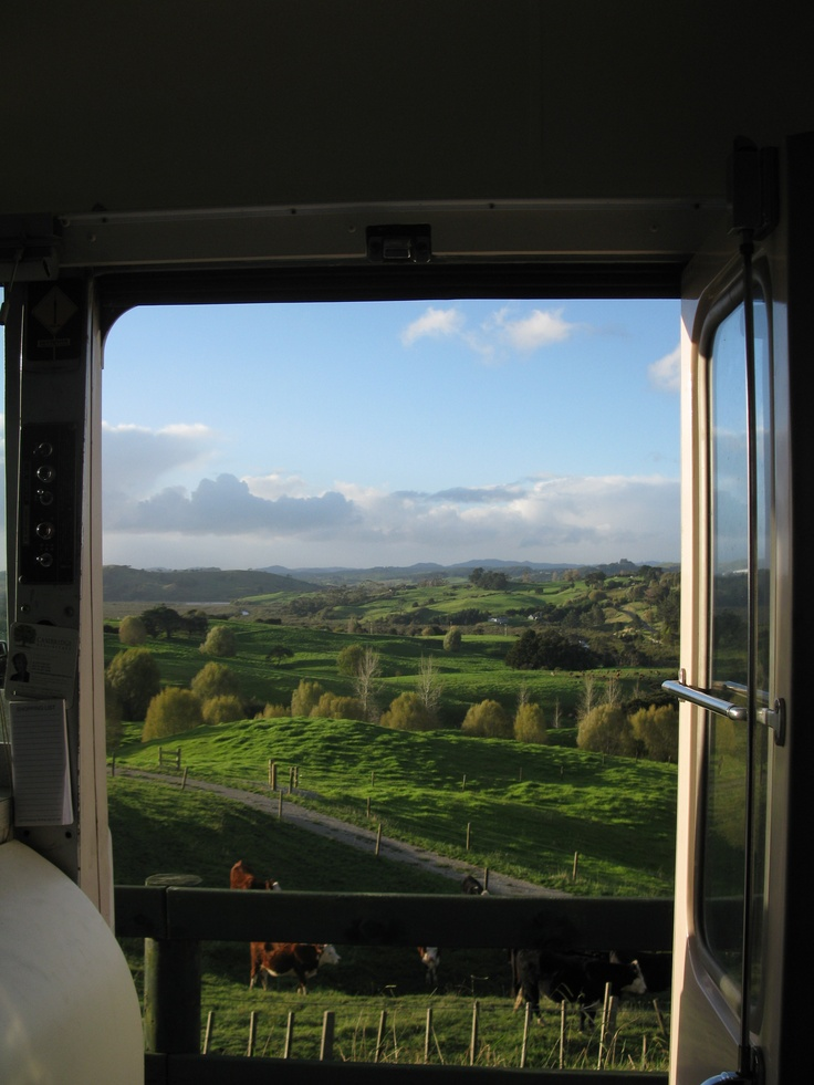 The countryside around Port Albert, New Zealand - photograph taken from the Kiwi Blog Bus