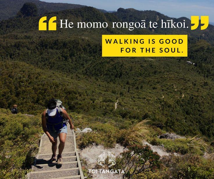 He momo rongoā te hīkoi. Walking is good for the soul.  #walktowork #thepinnacles #climbingmountains #walkmonth #ilovewalking #hiking #coromandelforest #kupuotewiki #wordoftheweek #tereo #Māori #toirēhia