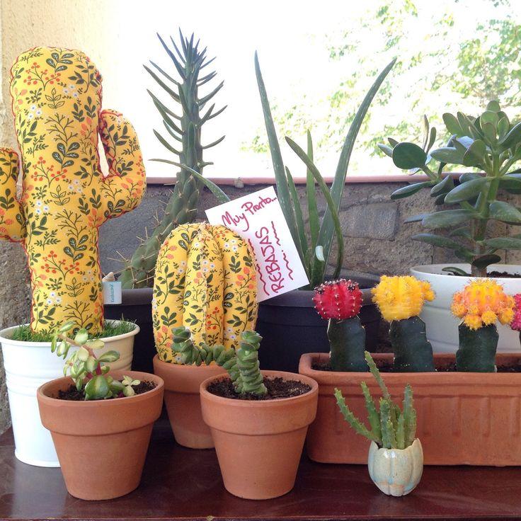 Muy pero que muy pronto tendremos todos los modelos de #cactusdetela en REBAJAS…