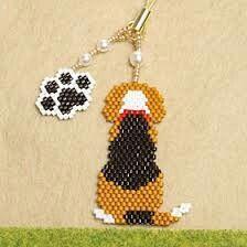 Tri-colour beagle