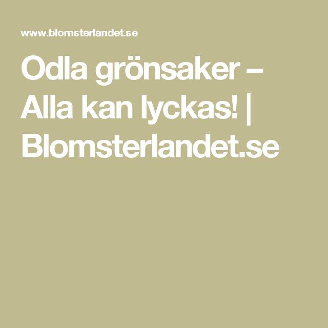 Odla grönsaker – Alla kan lyckas!   Blomsterlandet.se