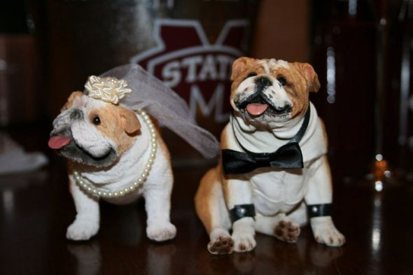 i love the Mississippi State bucket in the back ground, these bulldogs are cute. but i wouldnt have them