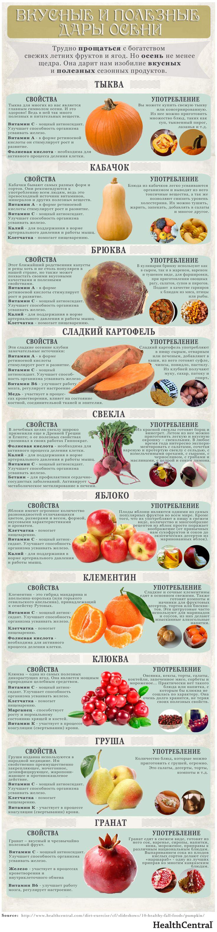 10 самых полезных осенних плодов
