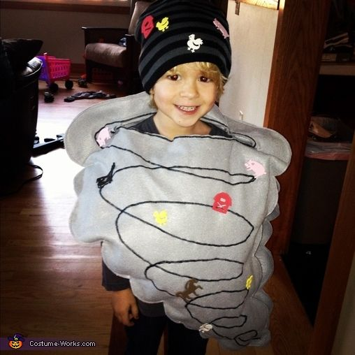 Tyler: My four year old is wearing a felt and foam (farm stickers) tornado costume! He LOVES weather and had a storm themed birthday party this year! He tells everyone he's...