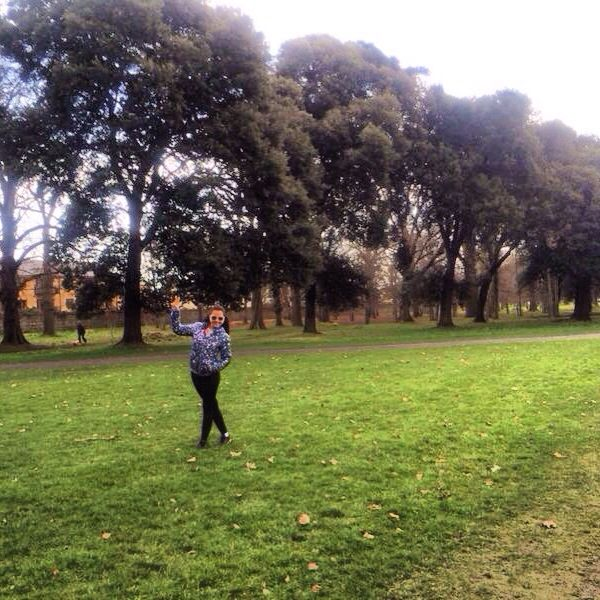 Merrion square Park
