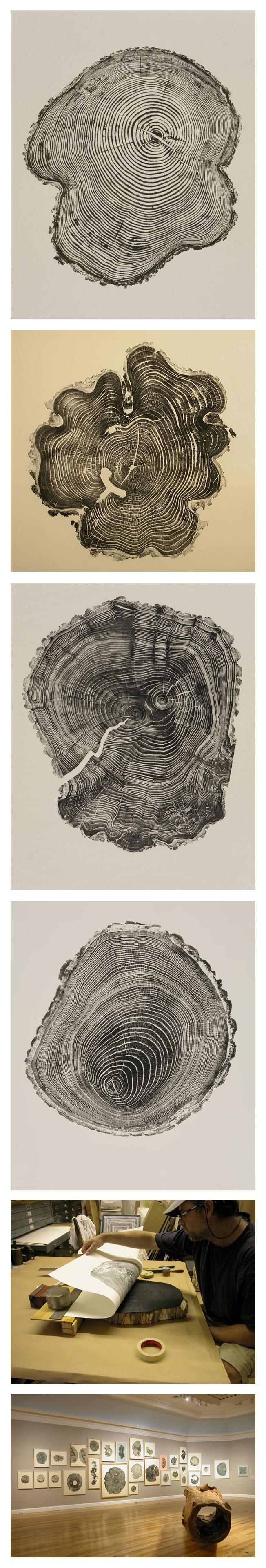 De l'encre, du papier et des souches d'arbres. L'artiste américain Bryan Nash Gill réalise une série d'impressions intitulée « Woodcuts ». Le résultat, très graphique, présente une étonnante similitude avec nos propres empreintes digitales.   2012 Berkshire Museum