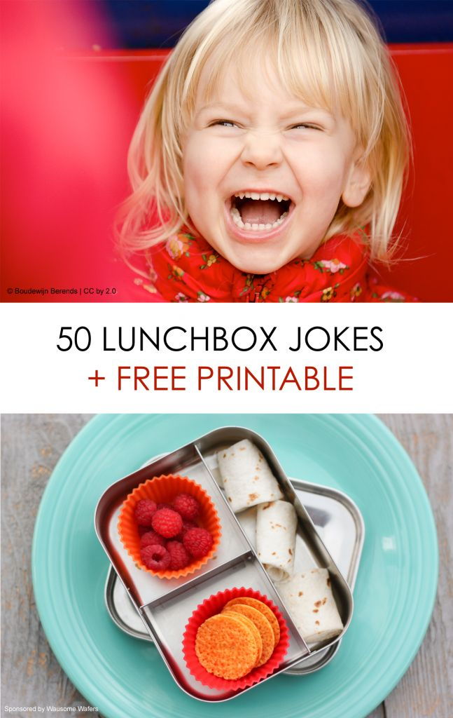 Printable Kids Lunchbox Notes: Over 50 Kid-friendly Jokes *Plus healthy lunch ideas