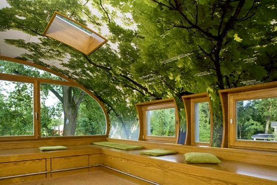 What a cool idea! This would make a sweet classroom, or very nature nerdy kids room. Very clever idea...