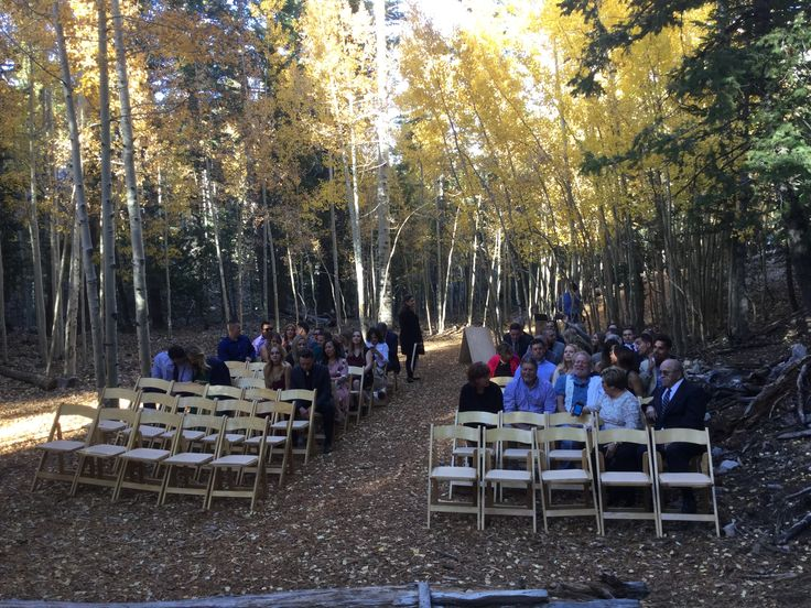Ski Basin, Lee Canyon, Mt. Charleston - wedding area| Officiant | Rev Judy Irving, Wedding Vows Las Vegas