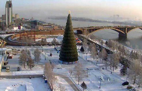 the tallest tree in Russia is 46 meters in Krasnoyarsk