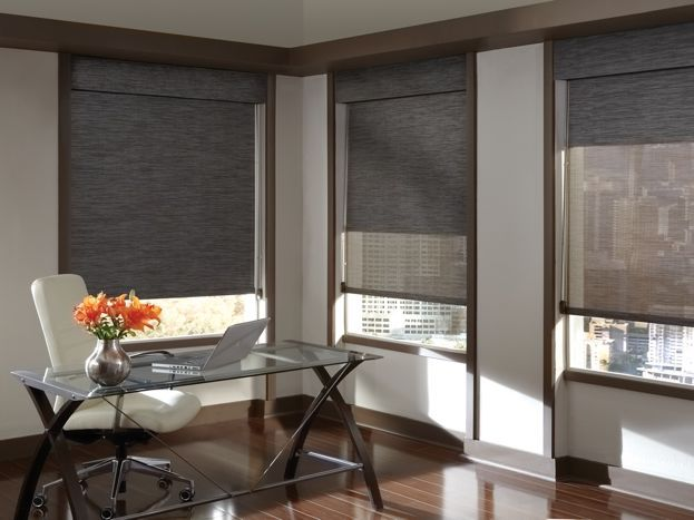 Designer Screen Shades. This is the shade style Im thinking of for the room