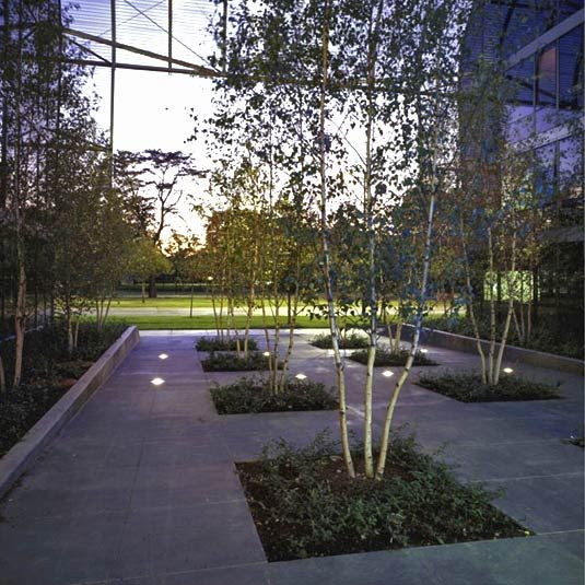 17 best images about iit main campus on pinterest for Chicago landscape
