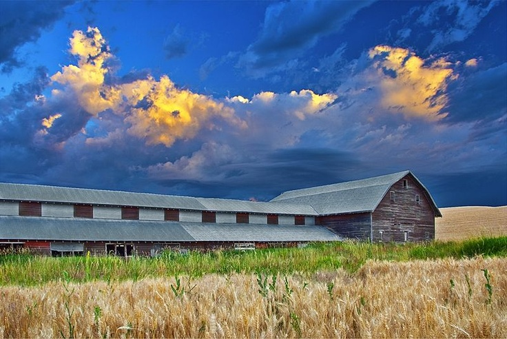 idaho palouse barn at sunrise