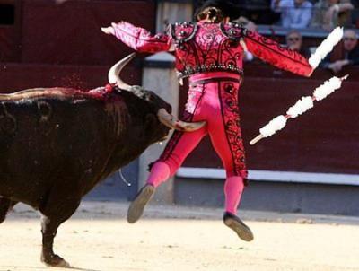 La corrida è la vergogna della Spagna!