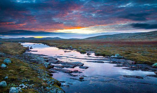 Hardangervidda, Hordaland, Norway.