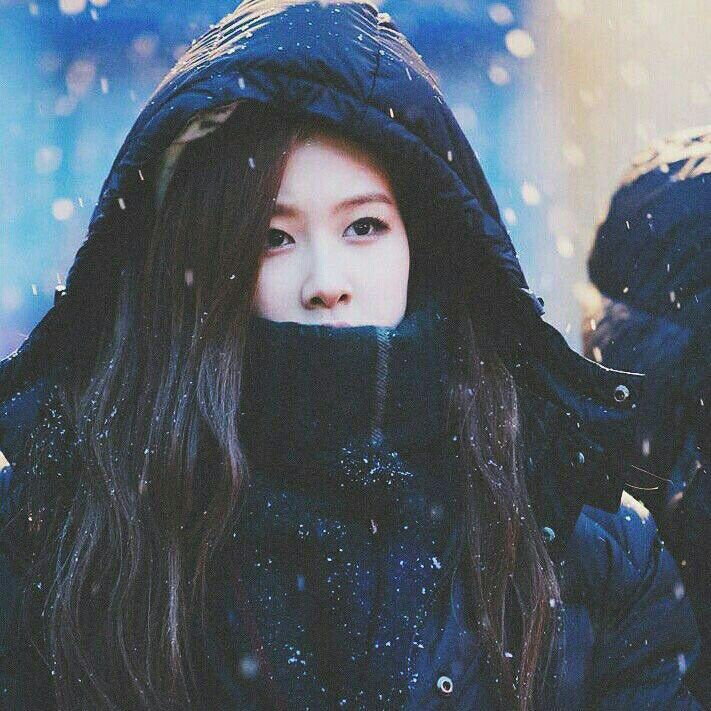 Blackpink Rose Kpop Cute Girl Korean Snow Idol Snow Photoshoot Black Pink Blackpink Rose