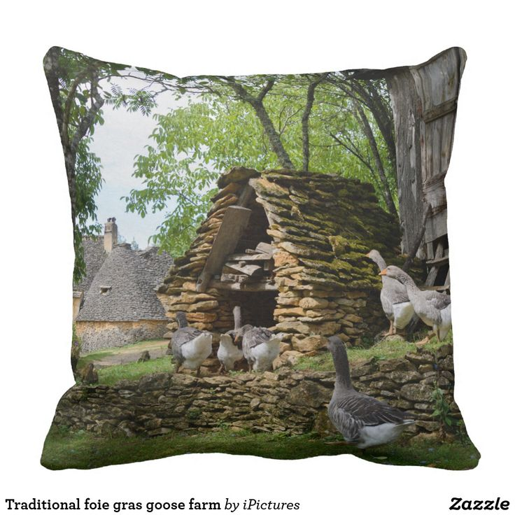 Traditional foie gras goose farm throw pillow