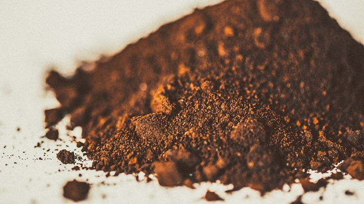 Waste coffee grounds will soon be processed and used to make biofuel for London's bus network