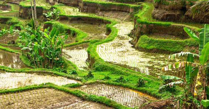 27 best places to visit images on pinterest destinations for Where to stay in bali indonesia