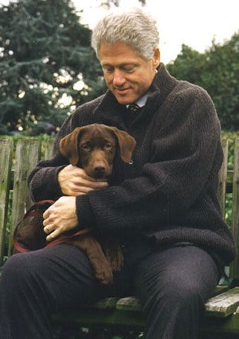 Dog in the White House with president Clinton  Ok, gotta say it, even boneheads can love dogs.