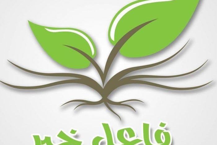 رقم فاعل خير يساعد المحتاجين ويعطي فلوس 2021 Plant Leaves Plants Leaves