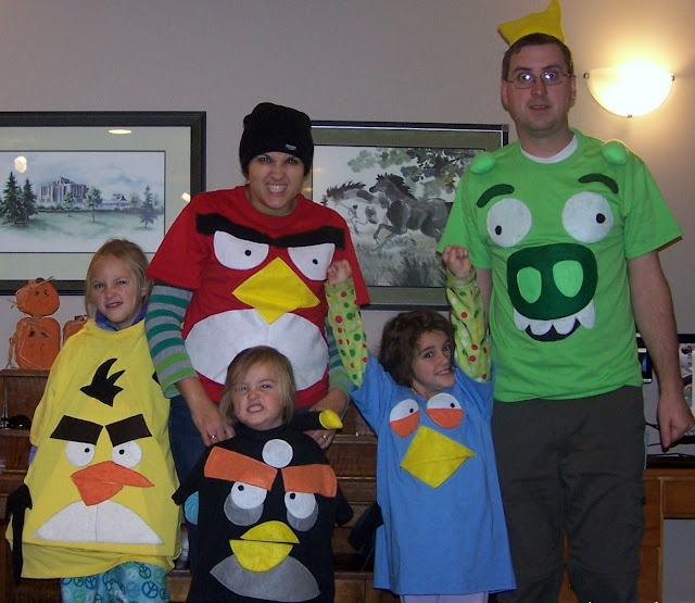 17 Best images about angry birds on Pinterest Angry birds stella - halloween group costume ideas for work