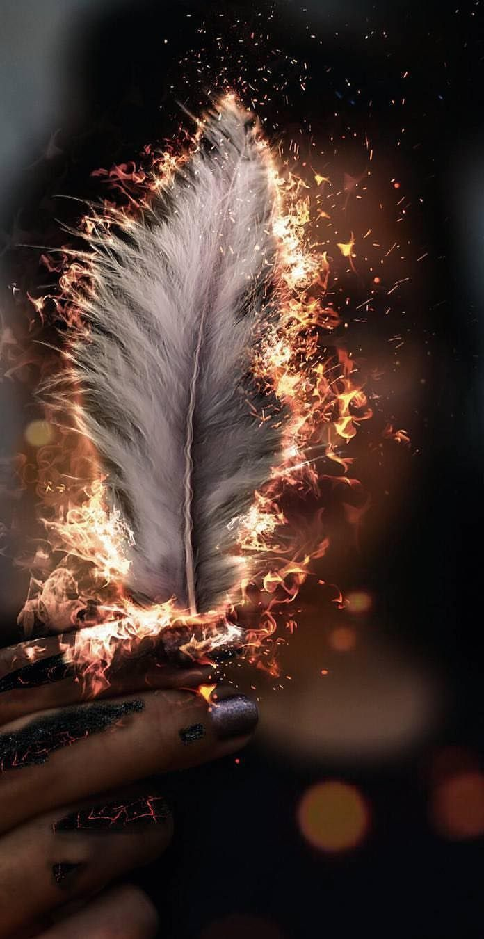 Brennende Feder Tapete – #Burning #Feather #graphism #wallpaper
