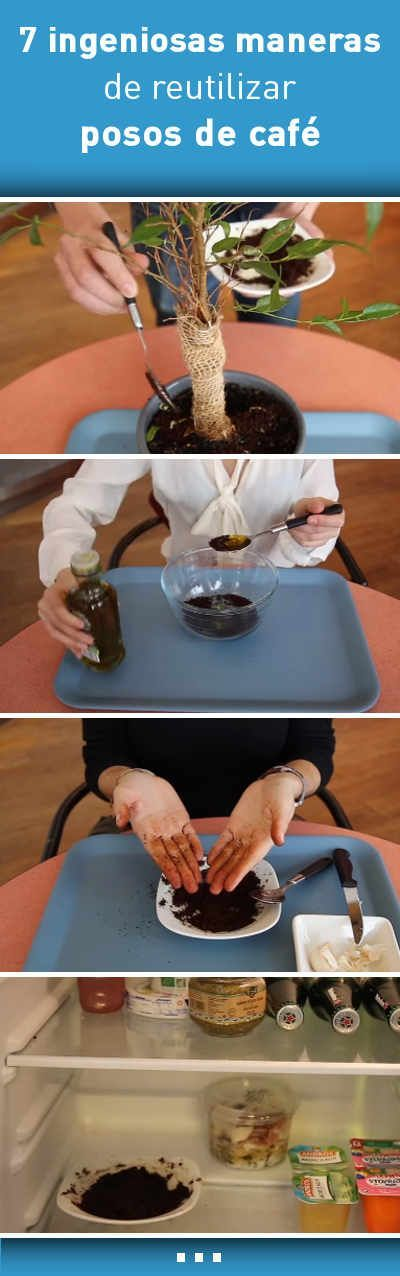 7 ingeniosas maneras de reutilizar posos de café #abono #exfoliante #quitarmalolor #mascarilla #tips #trucos #cafe