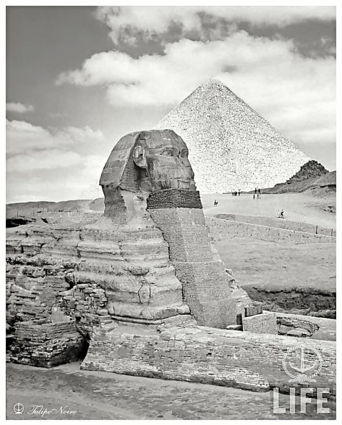 pin the sphinx pyramid - photo #5