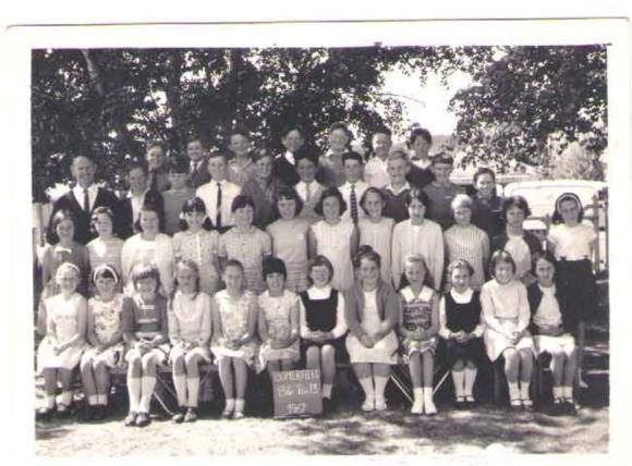 Oldfriends Co Nz Find Your Old Friends School