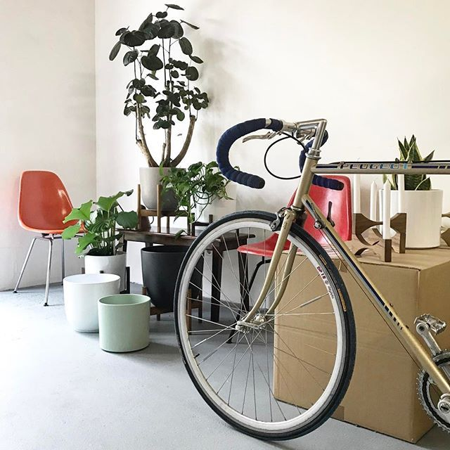 After a short holiday break we are back in the Studio. Next to our love to #Eames furniture and #handmade #planter by CONCEPT MODERN we are also in love with #vintage racing bikes! 😁🚴💚 ———————————————–——————— Interested? Info@conceptmodern.de ———————————————–——————— #Eames #CharlesEames #HermanMiller #vitra #plantstand #shellspotting #midcentury #interiordesign #retro #vintage #midcenturydesign #イームズ #ハーマンミラー #highsnobiety #altundneu #plants #design #architecture #interior #retro…