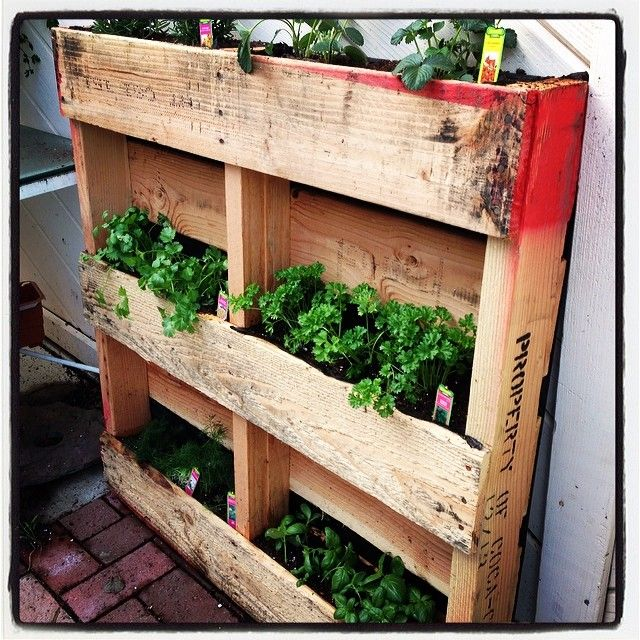 1000 images about reuse pallet for gardening on pinterest - Reusing pallets in the garden ...