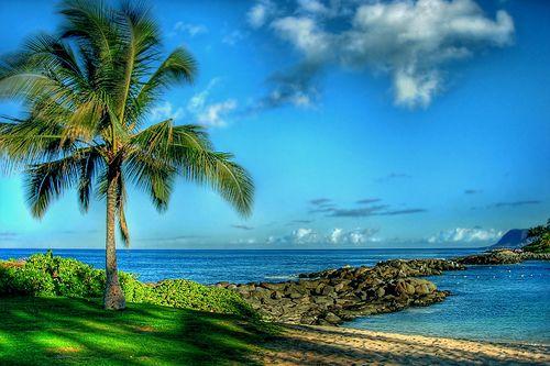One of mu very favioret places on earth  Ko'Olina Lagoon, Kapolei, Hawaii