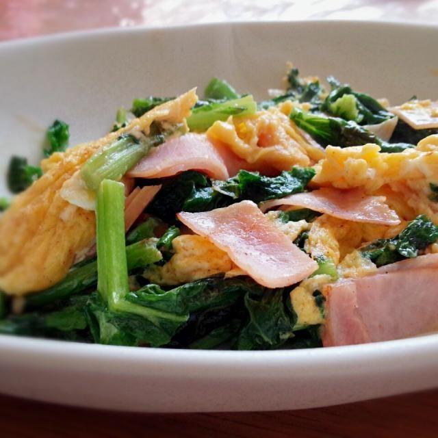 かき菜が手に入ったので、卵とハム(ベーコン無かった‥)で炒めました(^^)  クックパッドのレシピを見て、初めて卵にコンソメやマヨネーズを入れましたが、バターで炒めたせいもあるのかチーズみたいな味で美味しかったです(^o^)   春のお弁当にも良いですね(^^)◎ - 18件のもぐもぐ - 《春♪かき菜の彩り炒め》 #かき菜 #菜花 #菜の花 #スクランブルエッグ by erichiiiii