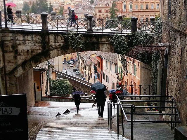 #topitalyofficial #ig_italia #italia #italy #instagramitalia #ig_perugia #perugia #umbria #colore_italiano #magic_place #magic_place #bestcitybreaks #travel #viaggi #iloveitaly #amo_italia #iamtb #aquedotto #travelblogger #travel #viajar #viajes #viaje #instatravel #travelgram #traveller #traveler #travelling #traveling #wanderlust #ilovetravel #rainydays by maxpippa_1965. instagramitalia #ilovetravel #rainydays #umbria #italy #viaje #travel #colore_italiano #iamtb #bestcitybreaks #aquedotto…