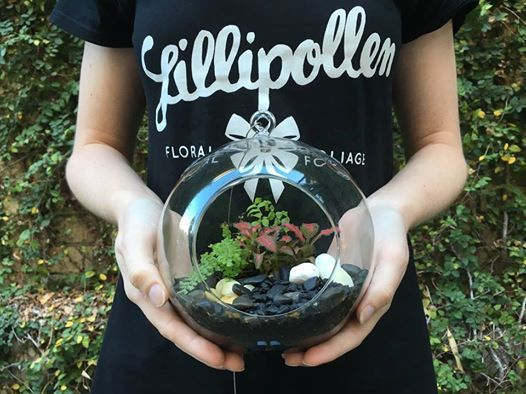 Terrarium Giveaway!  Who doesn't love a terrarium to green up the home? We're giving away this little cutie to one lucky winner. To enter, simply:  1. Follow us on Pinterest 2. Tag 3 friends in this photo  Easy! A winner will be randomly drawn this Friday, 27th May.