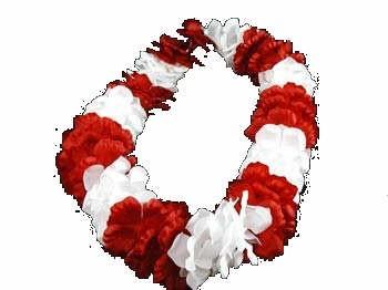 Red N White Flower Lei