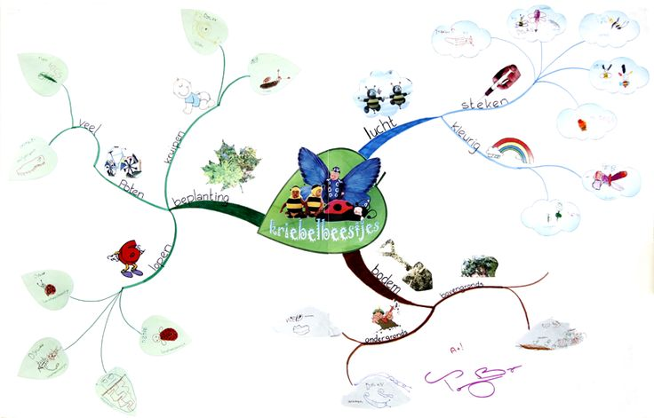 Voorbeeld mindmap over Kriebelbeestjes op de site mindmappen voor kleuters. Geweldig!